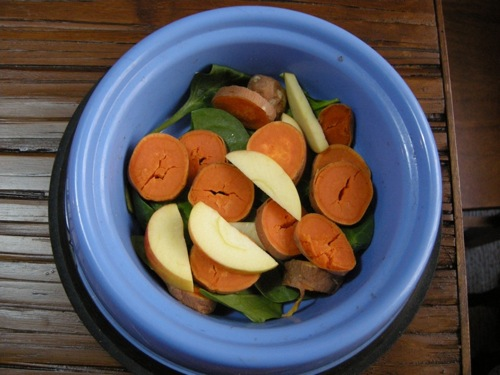 Vegan dog food recipe happy herbivore forumfinder Gallery