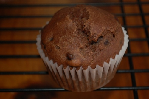 Picture of Double Chocolate Muffins