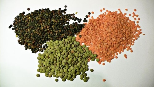 red, green, and black lentils next to each other