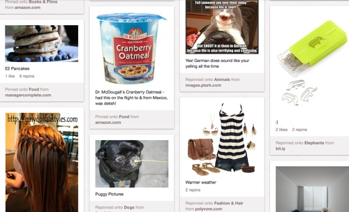 screen shot image of pins made in Pinterest by Happy Herbivore