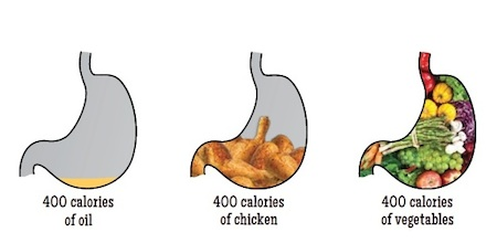 https://dmi4pvc5gbhhd.cloudfront.net/2015/07/caloric-density-stomachs.jpg